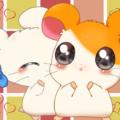 Hamtaro – Piccoli Ham Ham
