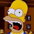 Homer Simpson – Personaggi di Cartoni e Fumetti